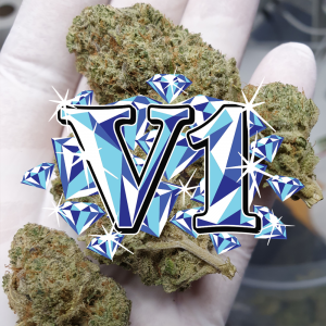 CBD Wholesale - CBD V1