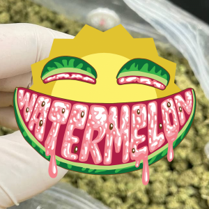 CBD Wholesale - CBD Watermelon